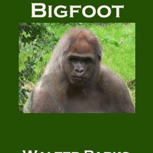 Big foot Sightings